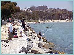 Dana point beach for Dana point pier fishing