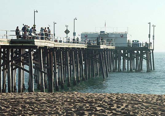 Newport beach pier for Newport pier fishing