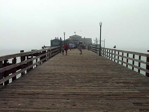 Seal Pier Middle