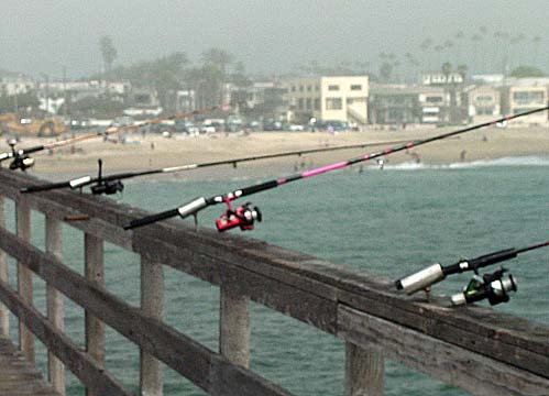 Orange county beaches seal beach to bolsa chica for Seal beach fishing